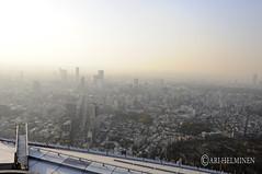 Mori tower Roppongi hills, View of Tokyo