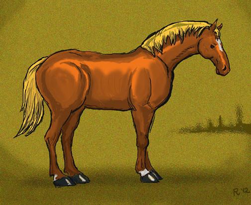 equus1