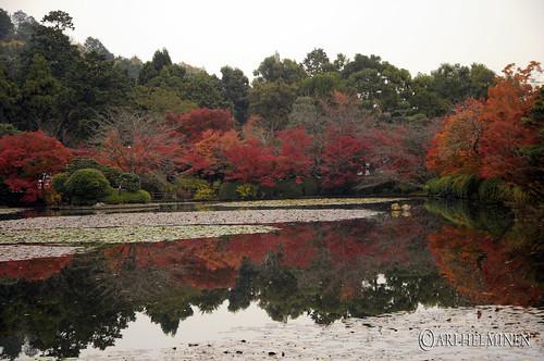 龍安寺 Ryoanji-temple