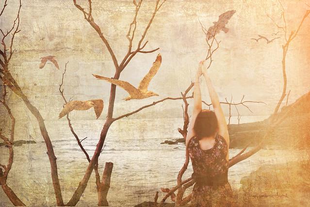 67. Sand birds