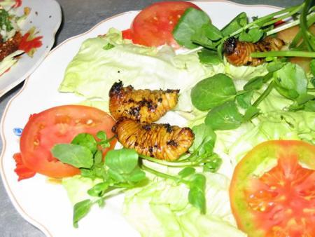 Món ăn chế biến từ Con Đuông & Kiến Vương (Kiến Dương)  Đuông dừa nướng lửa than ngon lạ
