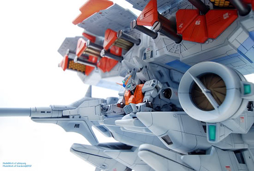 MSIA Dendrobium Custom Painted Colors GundamPH EFSF (9)