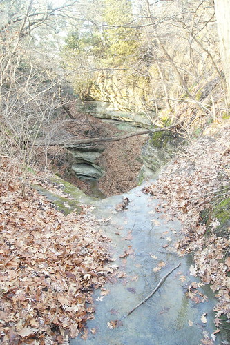 Stream into Canyon