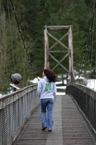 Tolt MacDonald Park suspension bridge