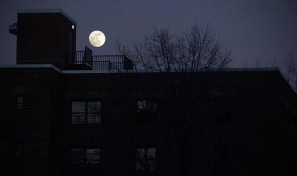 Moon Over Brooklyn