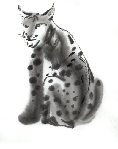 forrest-cat