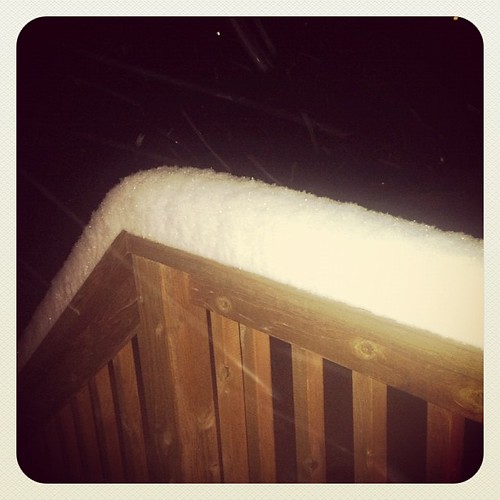 "Just a little bit of snow. I'm guessing this is 4"" on the banister. A little more on the ground."