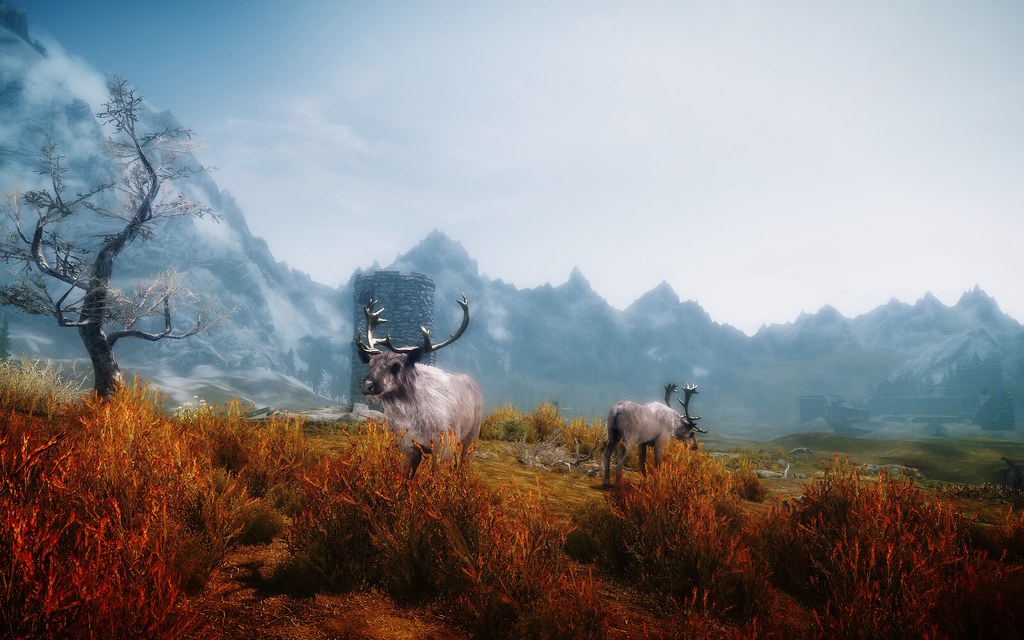 Skyrim w/ Cinematic Lighting ENB