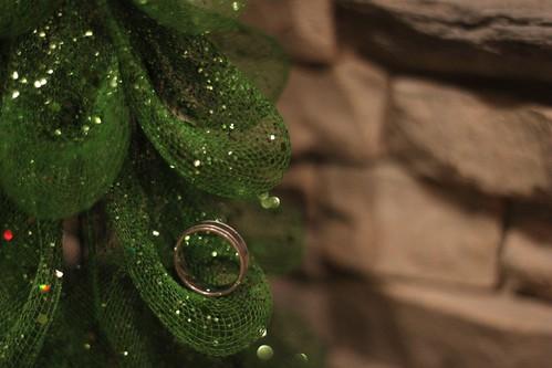 283/365 12/08/2011 Ring