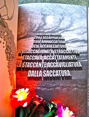 Maurizio Ceccato / Ifix, non capisco un'acca. Hacca edizioni 2011. 6