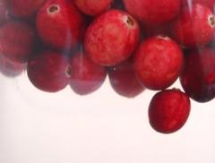 Cranberries bathing
