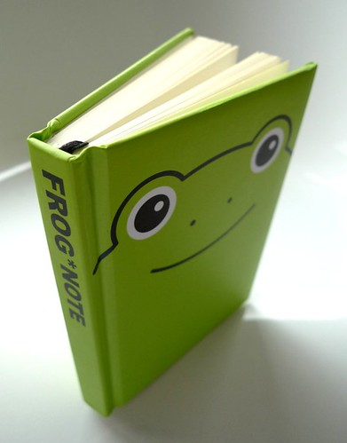 Frog notebook (angle)
