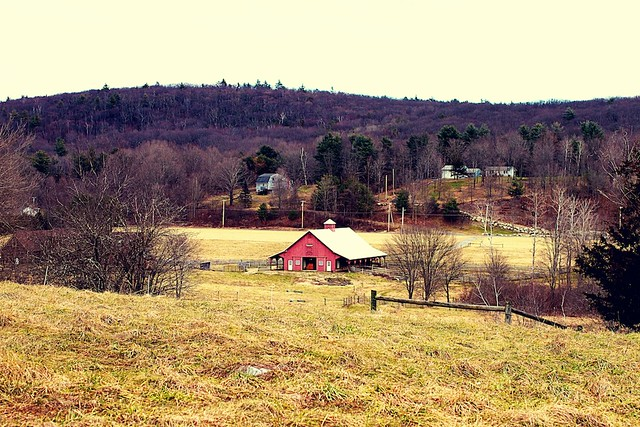 Mayfly farm (barn)