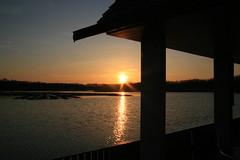Brockholes Sunset