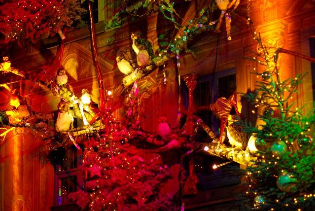 Noël d'oiseaux II / Birdy Christmas II