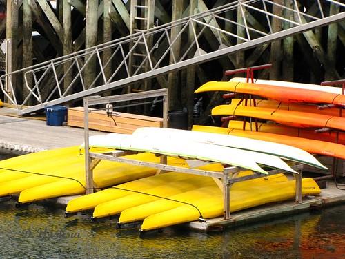 Canoes at Bar Harbor