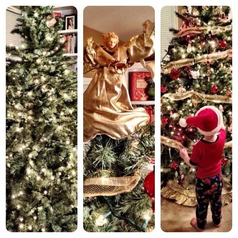 Steps to decorating a Christmas Tree... #christmas