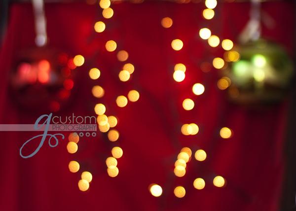 49 - dear santa lights