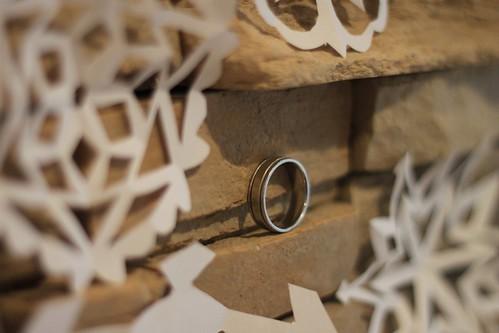 278/365 12/03/2011 Ring