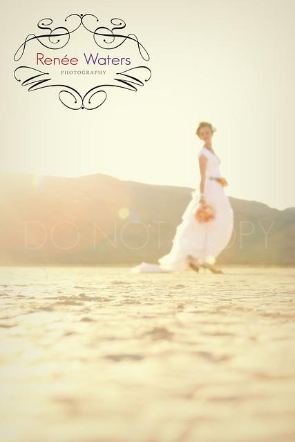 bride, bridal, wedding, las vegas  trash the dress, gown, concept photographer, styled shoot