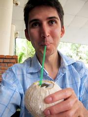 Coconut #12