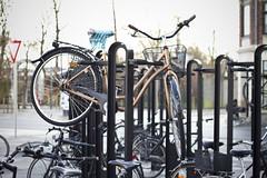 Aalborg Bike Rack_1