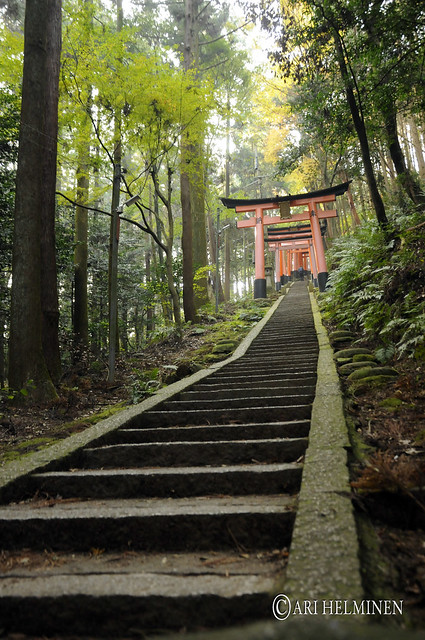Fushimiinari shrine 伏見稲荷大社