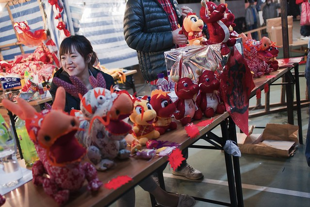 The girl with dragon dolls