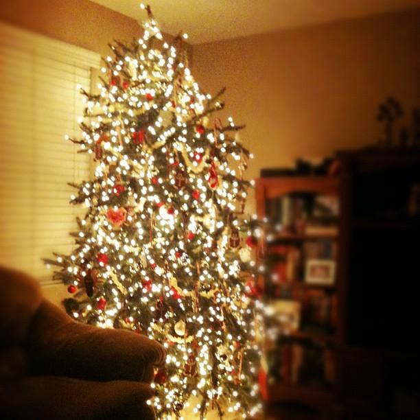 Christmas is magic.