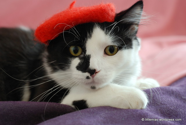 red beret 2-5-2012 3-12-55 PM