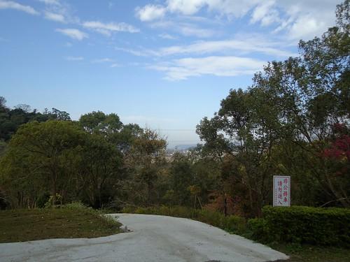 2012東勢林場櫻花4