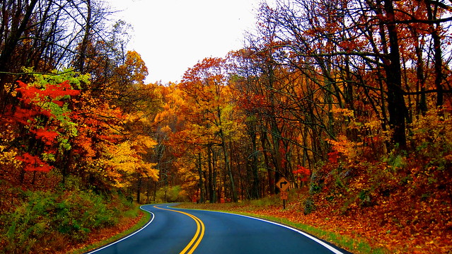 Skyline Drive, Shenandoah National Park