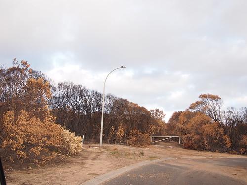 Result of Margaret River bushfire