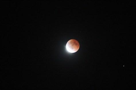 L.A. Lunar Eclipse 2014