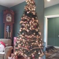 Tour de Noel: Tree #3