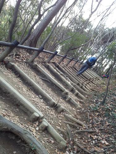 のぼりは稲荷山コースにて。@2011/12/23 高尾山