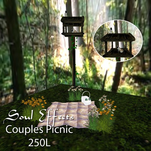 -SE- Couples Animated PIcnic