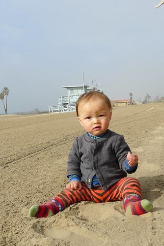 Fin loves sand
