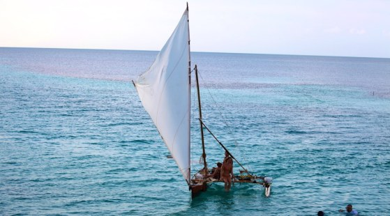 Sailing ship coming back from paradise..