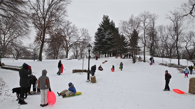 people sledging in central park