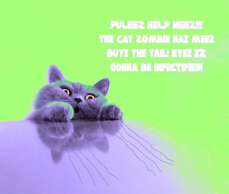 CatZombieAttacks