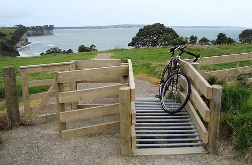 Coastal Trail Cattle Grid, Long Bay Regional Park.
