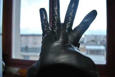 gant 5