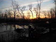 Bike Commute 144: Winter Solstice Sunrise by Rootchopper