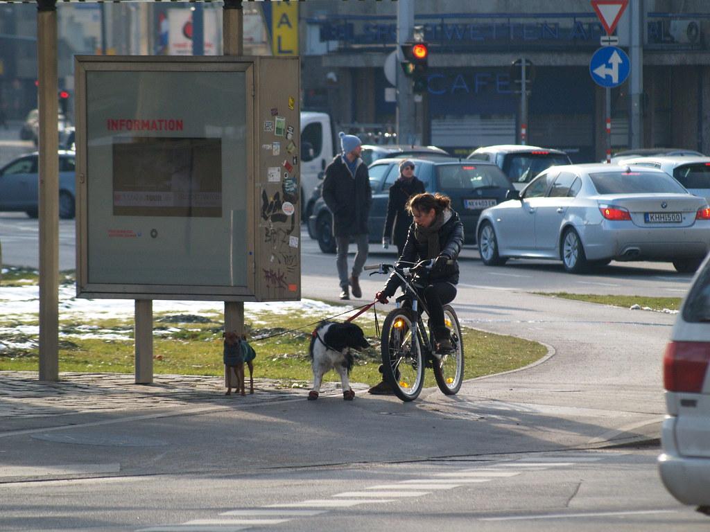 dag cycling
