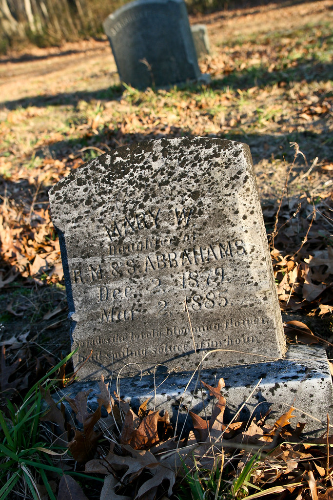Abrams, Mary W, b. Dec 2, 1879, d. Mar 02, 1885, d/o Richard & Sarah