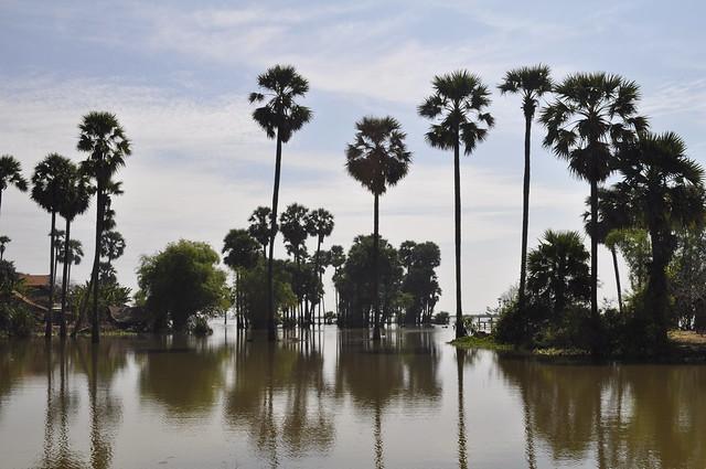 2011-11-25 Siem Reap 58