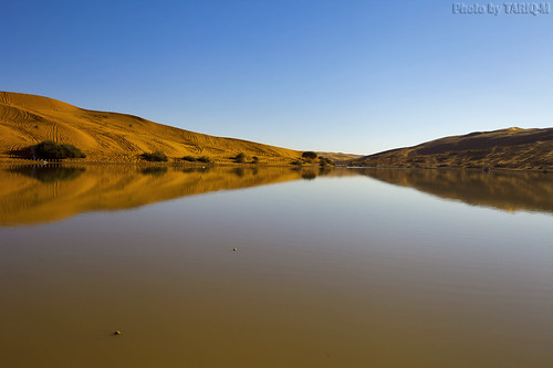 Reflection of the dunes by TARIQ-M