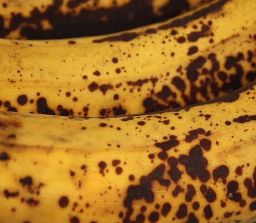 Past their best bananas 14/366