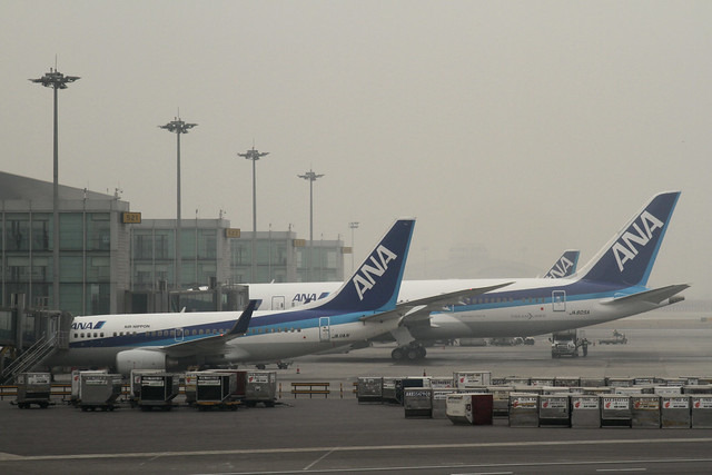 ANA B787-8(JA805A) and ANA B737-700(JA11AN)